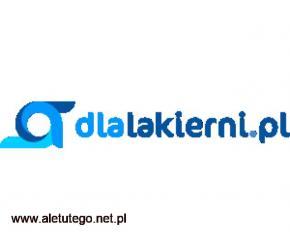 Szukasz zaprawki lakierniczej? Sprawdź ofertę dlalakierni.pl