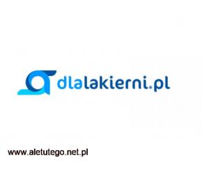 Dlalakierni - internetowy sklep wyposażający warsztaty samochodowe